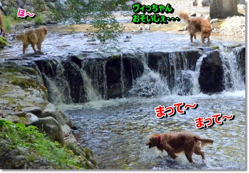 DSC_6309_201406110836164b6.jpg