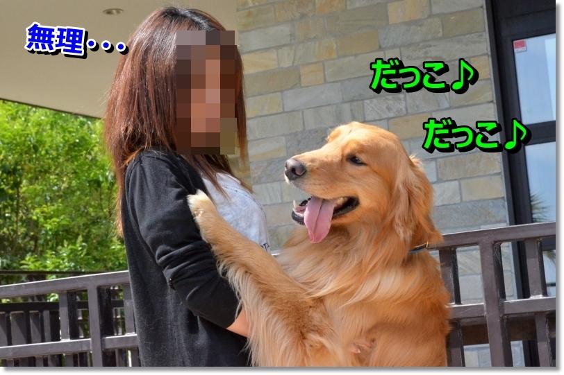 DSC_6491_201406191023211c5.jpg