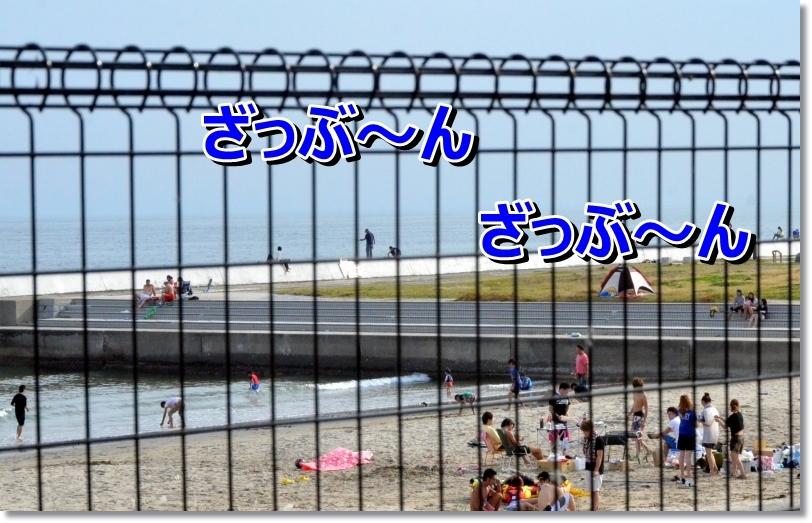 DSC_7054.jpg