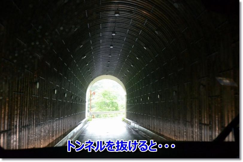 DSC_8198_20140707235003feb.jpg