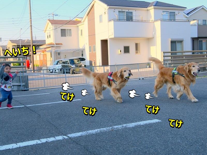 DSC_9791.jpg