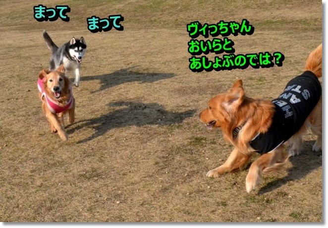 DSC_9817.jpg