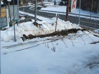 2014-02-19-008.jpg