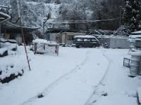 2014-03-21-010.jpg