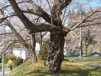 2014-04-20-014.jpg