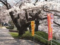 2014-04-20-017.jpg