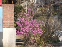 2014-04-20-037.jpg