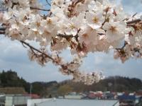 2014-04-22-048.jpg