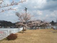 2014-04-22-056.jpg