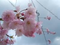 2014-04-22-060.jpg