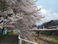 2014-04-22-k068.jpg