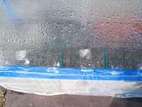 水槽温室005