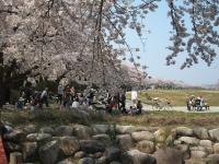 展勝地2014-04-26-北上市005
