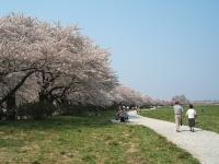 展勝地2014-04-26-北上市053