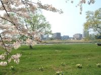 展勝地2014-04-26-北上市062