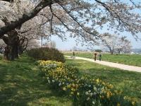展勝地2014-04-26-北上市059