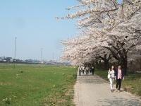 展勝地2014-04-26-北上市066