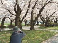 展勝地2014-04-26-北上市065