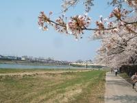展勝地2014-04-26-北上市076