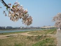 展勝地2014-04-26-北上市075