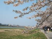 展勝地2014-04-26-北上市074