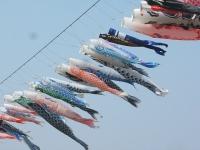 展勝地2014-04-26-北上市090