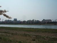 展勝地2014-04-26-北上市109