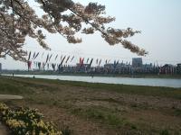 展勝地2014-04-26-北上市108