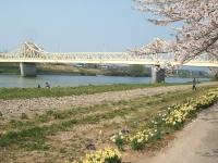 展勝地2014-04-26-北上市111
