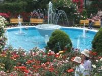 2014-06-21花巻温泉街バラ園119