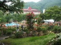 2014-06-21花巻温泉街バラ園124