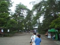 2014-06-28毛越寺あやめ祭り005