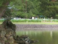 2014-06-28毛越寺あやめ祭り026
