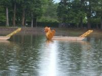 2014-06-28毛越寺あやめ祭り023