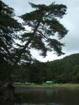 2014-06-28毛越寺あやめ祭り024