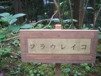 みちのく紫陽花園2014-07-05-058