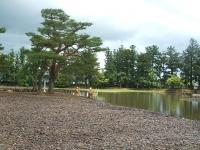 2014-06-28毛越寺あやめ祭り082