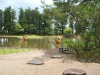 2014-06-28毛越寺あやめ祭り084