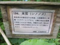 みちのく紫陽花園2014-07-05-098