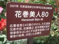 2014-06-21花巻温泉街バラ園230