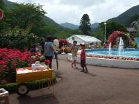 2014-06-21花巻温泉街バラ園238
