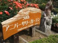 2014-06-21花巻温泉街バラ園234