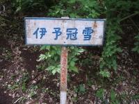 みちのく紫陽花園2014-07-05-120
