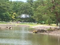 2014-06-28毛越寺あやめ祭り111