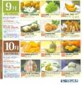 日本エスリード カタログ02 201403