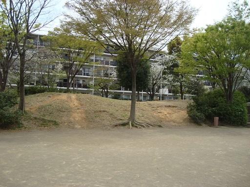 東野台2号墳全景