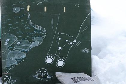 白熊とアザラシの看板写真