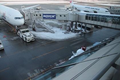 新千歳空港 JALスポット