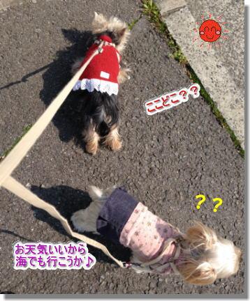 20140323001.jpg