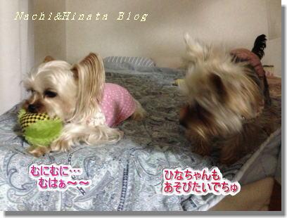 20140624001.jpg